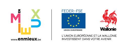 Logo Feder Fse+wal 500x194